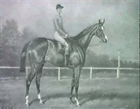a bay racehorse with jockey up by w.j. hepper
