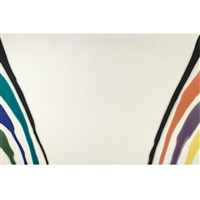 gamma kappa by morris louis