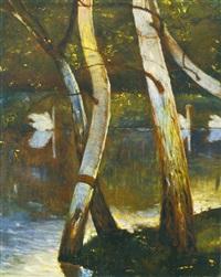 swans' lake by geza farago
