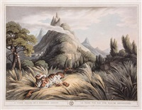 the tiger at bay; the dead tiger; a tiger killed by a poisoned arrow (3 plates) by william samuel howitt