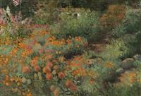 poppies & protea, blooming flower garden by meredith brooks abbott