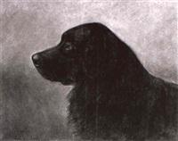berner sennenhund by fritz van den daele