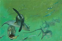 bluefish 7