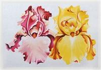 pink and yellow irises by lowell blair newsbitt