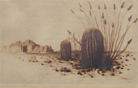 barrel cactus number one by george elbert burr
