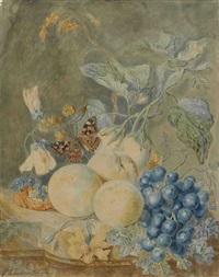 früchtestillleben mit schmetterling by cornelia maria haakman