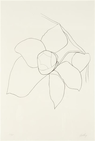 camellia ii from suite of plant lithographs by ellsworth kelly