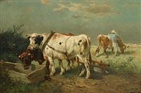 bétail assoiffé by henry schouten