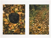 dark elm patch (2 works) by andy goldsworthy