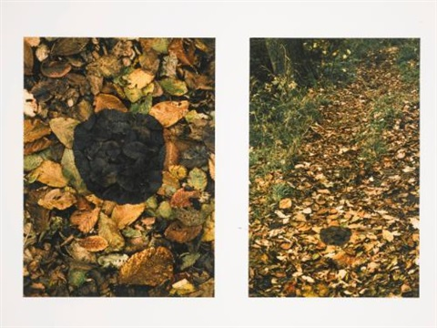 dark elm patch 2 works by andy goldsworthy