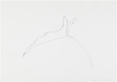 leaf xi from twelve leaves series by ellsworth kelly