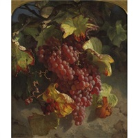grapes on a vine by theude grönland