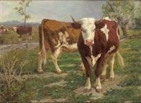 kühe auf der weide by lajos nemeth