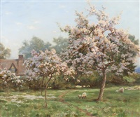 sheep in an orchard by robert payton reid