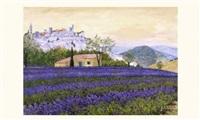 lavande en fleurs by ghislaine pachet micheneau