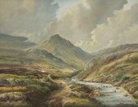 connemara by higgins