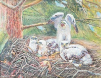 jeunes rapaces au nid by edouard paul merite