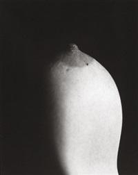 rakete by natascha auenhammer