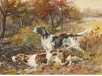 english setter & pointer in a field by edmund henry osthaus