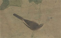 bird and spider by anonymous-chinese (qing dynasty)