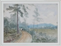 long road home by james madison alden