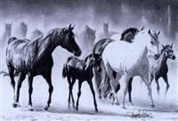 caballos by demetrio sanz