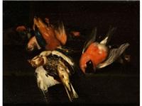 stilleben mit singvögeln und eisvogel by franz werner von tamm