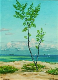 dania, florida coastline by henry curtis ahl
