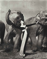 dovima with elephants, evening dress by dior, cirque d'hiver, paris, 1955 by richard avedon