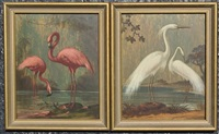 flamingos and egrets (2 works) by alphonse t. toran