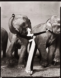 dovima with elephants, evening dress by dior, cirque d'hiver, paris, august 1955 by richard avedon