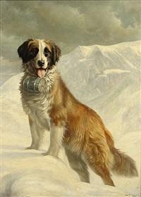sint bernardshond in de sneeuw by joseph schippers