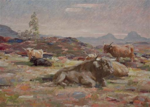 highland cattle on the moor by andrew douglas