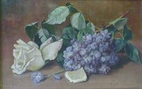 still life with white rose and wisteria by emily selinger