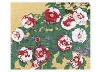 camellias by nobuyoshi aoyama