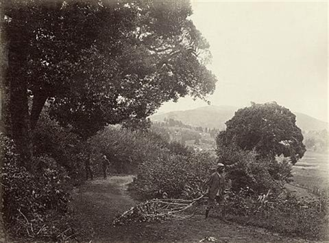 road near ootacamund by william willoughby hooper