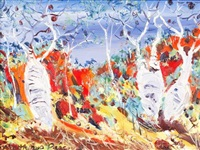 boab trees near mount barnett by matthew perceval