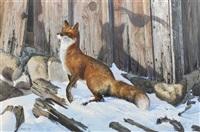 the fox by don kloetzke