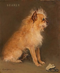 "portrait of the brussels griffon ""dearly"" by eugène van gelder"