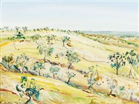 new south wales landscape by matthew perceval