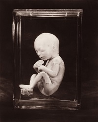 four photographs by gwen akin