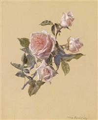 ein rosenzweig by irma komlósy