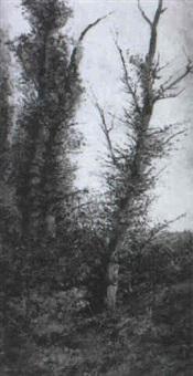 paisaje con arboles by ramiro lafuente