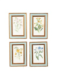 flowers (set of 12) by frederick edward hulme
