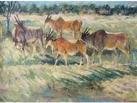 elands by zakkie (zacharias) eloff