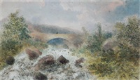 over the rapids by james madison alden