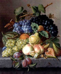 grapes and other fruit on a ledge by amalie kaercher