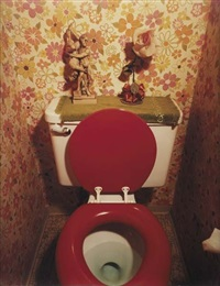toilet from suburbia by bill owens