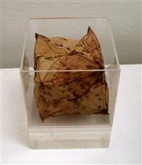 leaf box by andy goldsworthy