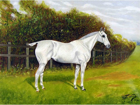 portrait of a horse by h armstrong